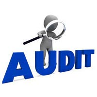 Company Audit Services