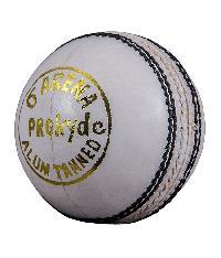 Prokyde Arena White Cricket Balls