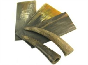 Horn Raw Material