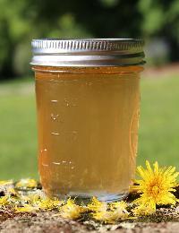 Green Mango Herbal Syrup