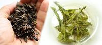 Whole Green Tea Leaves