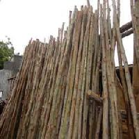 Commercial Wood Poles