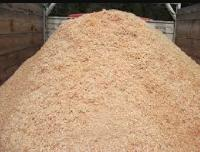 Wood Sawdust Raw Material