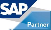 Sap Business One Services, Ms.net Development Services