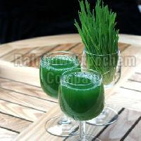 Barley Grass Juice