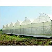 Naturally Ventilated Greenhouse / Polyhouse