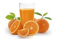 Sugar Free Fruit Squash