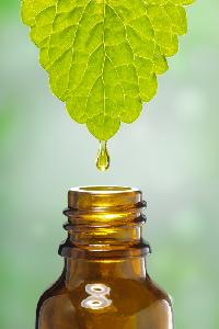 Herbal Fragrances