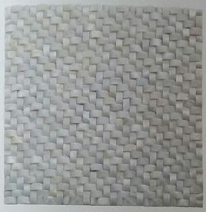 Shell Mosaic Tiles