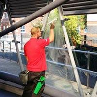 Bird Spike Installation Services