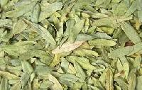Dried Senna Leaves