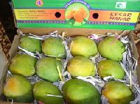 Mango at Best Price from aam Suppliers & Wholesalers in India