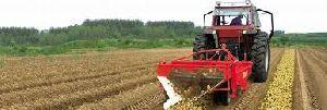 Potato Harvester