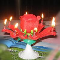 Rose Musical Candle