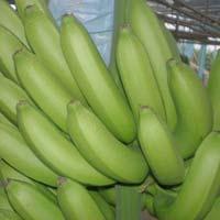 G9 Banana