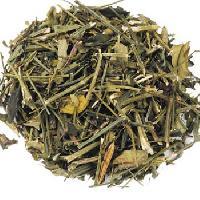 Dry Chirata Leaves