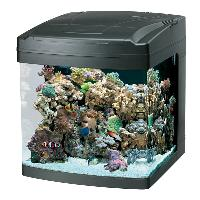 Aquarium Mini Tank