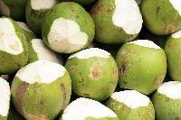 Raw Tender Coconut