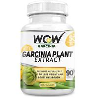WOW Garcinia Cambogia Plant Extract
