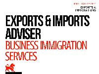 export consultants services