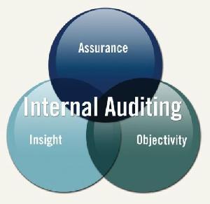 Internal Audit Assurance Services