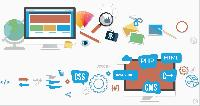 Web Designing & Development Services