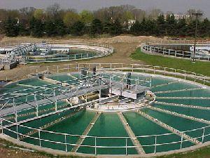 Sewage Maintenance Service
