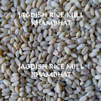 Harees Whole (hulled Wheat)