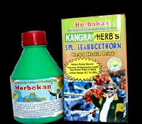 SPL. Seabuckthorn Herbal Health Drink