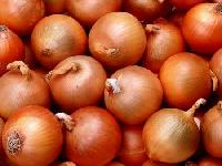 Fresh Desi Onion
