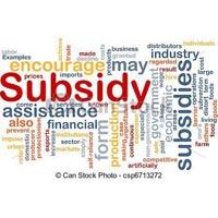 Capital Subsidy Services