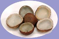 Dried Coconuts