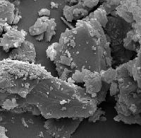 Granulated Lactose Monohydrate