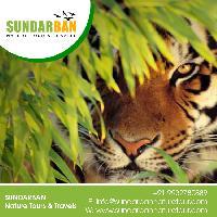 Sunderbans Package Tour  travel agency in Sundarban