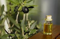 Need Olive Leaf Extract