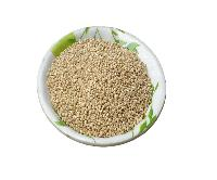 Natural Herbs High Quality Quinoa Seeds