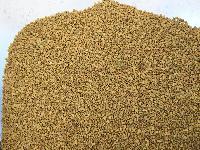 Fine Quality Fenugreek Seeds