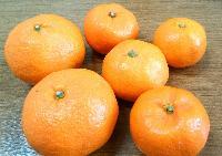 Fresh Japanese Orange 01