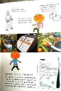 Fresh Japanese Orange 03