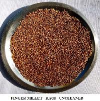 Red Millet - Finger Millet - Ragi