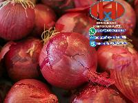 Fresh, Dried Onion