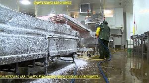Food Processing Sanitizer Machine