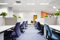 Office Painting Services