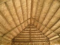 Bamboo False Ceilings