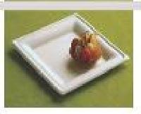 Sugarcane Bagasse Square Plates