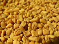 Fanugreek Seeds
