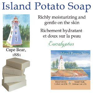 Maritime Eucalyptus Potato Soap