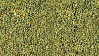 Cattle Feed Millet