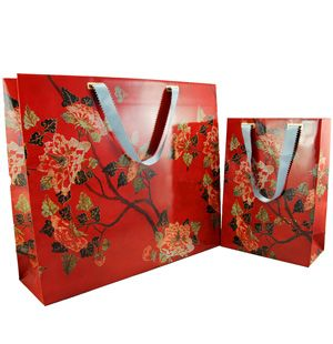 Imported Art Card Paper Bags
