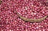 Best Onions